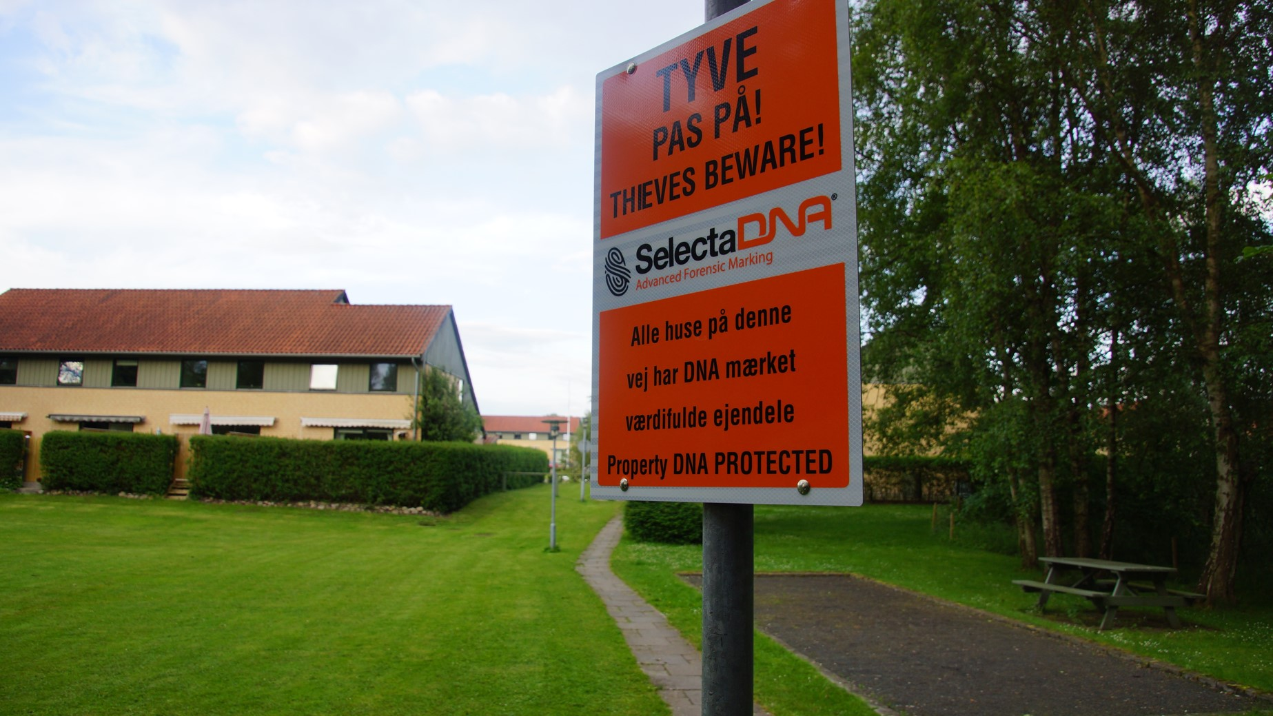 1. juledag besøger TV2 News boligforening efter 6 måneder med SelectaDNA