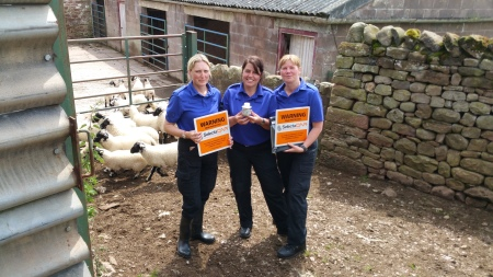 Cumbria Police Launch Traceable Scheme To Tackle Livestock Theft