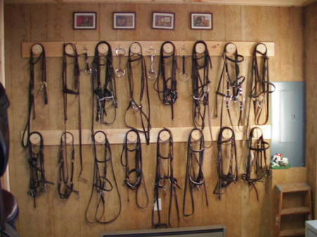 Horse Riders Saddle Up To Guard Against Tack Theft