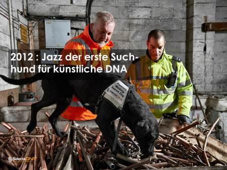 SelectaDNA Suchhund