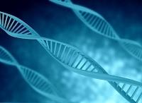 Reportage du siteweb police scientique sur l'ADN de SelectaDNA